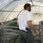 Greenhouse in Bet Hagai, Israel